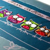 Raspberry Owls (R16.)