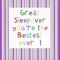 Great Sleepover (CR33)