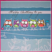 Raspberry Owls (R16)