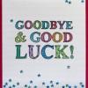 Goodbye and Good Luck (V16)