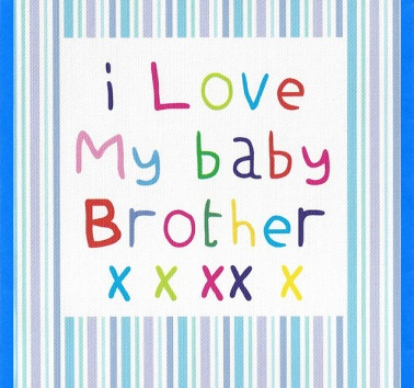 I Love my Baby Brother (CR27)
