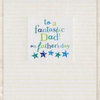 Fantastic Dad (D244)