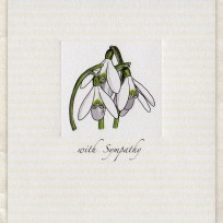 Snowdrops (D291)