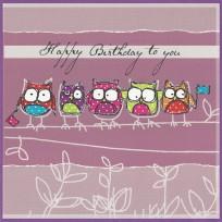 Owls (B16)